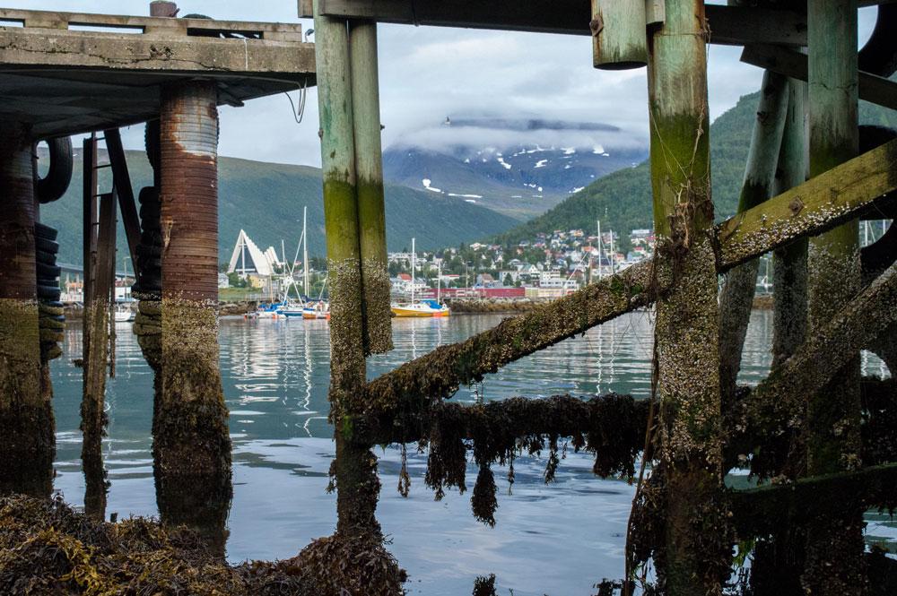 Tromsø harbor.